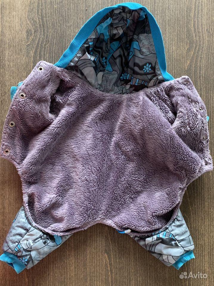 Одежда для собак - фотография № 2
