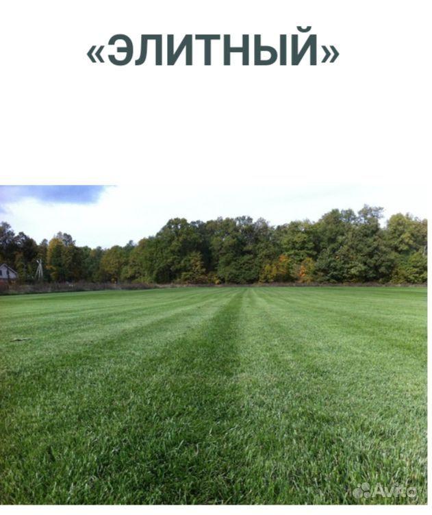 Рулонный газон купить на Зозу.ру - фотография № 3