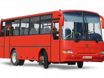 """Автобус кавз 4235-62 """"Аврора"""" ямз EGR Евро-5, МКПП"""