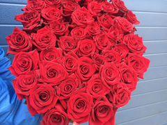 Розы 20(длинна 30 см)