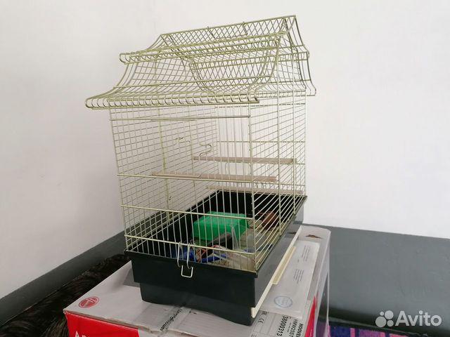 Продам клетку для попугаев  89501026382 купить 3