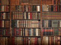 Антикварная библиотека, Капвложение Инвестиции